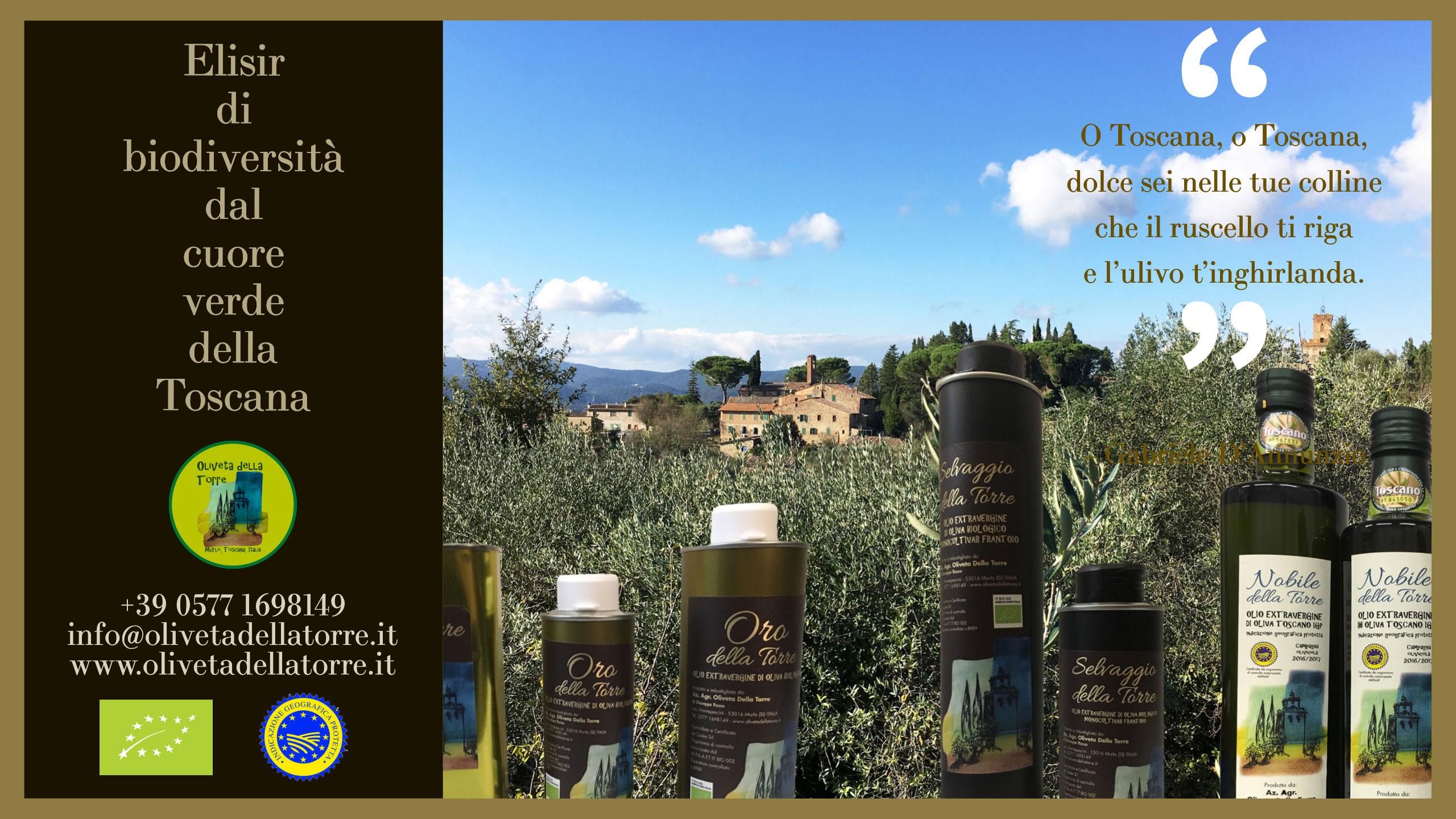 Campagna toscana con olivi e bottiglie di olio in primo piano.